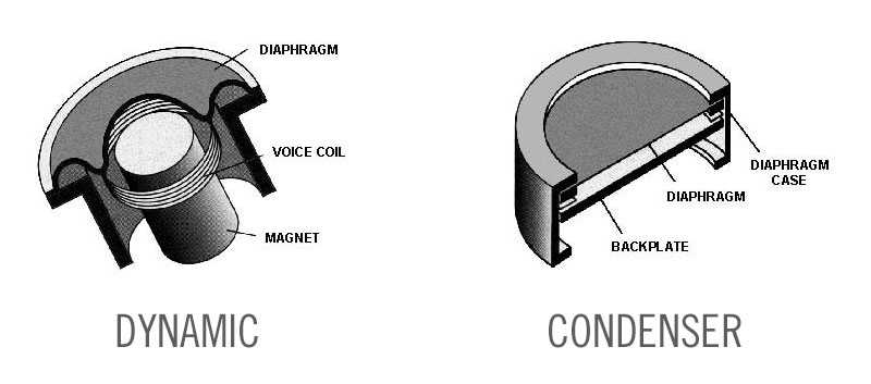What's The Difference Between a Dynamic and Condenser Microphone?